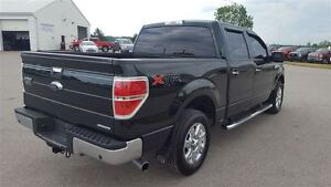 2013 Ford F-150 XTR 4X2 | Tow Pkg | Rear Camera Kitchener / Waterloo Kitchener Area image 7