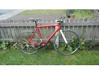 Custom Hybrid /Road Bike