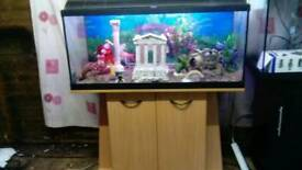 3.3ft fishtank with beech cabinet +external filter