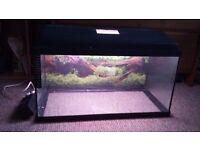 60 ltr fish tank