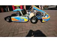 FA Alonso Tony Kart Go Kart