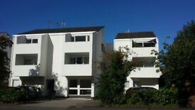 Modern 2 bedroom flat to rent on Willes Road Leamington Spa; Balcony, 2 parking spaces
