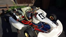 Birel World Formula Gokart