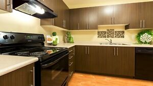 Mill Woods/SE - Pet friendly 3BR apartment w/insuite laundry Edmonton Edmonton Area image 4
