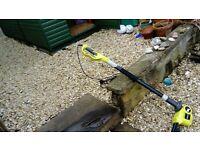 Ryobi RPT 4045 electrical long reach hedgetrimmer