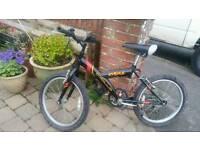 Boys mountain type bike