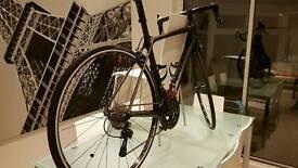Trek SLR Carbon Road Bike