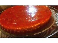 Jaffa Cake extra large birthday cake