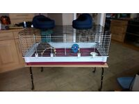 large indoor cage for guinea pigs/small rabbit plus starter bundle!