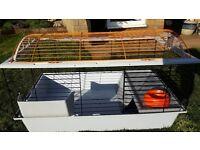 Indoor rabbit or guinea pig cage