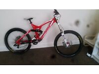 RAM DHX2 downhill bike . Mountain bike . Freeride
