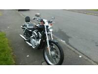 Harley Davidson Sportster 883 XL Custom
