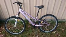 Girls mountain bike with gears suit 10 - 14 y/o Greta Cessnock Area Preview
