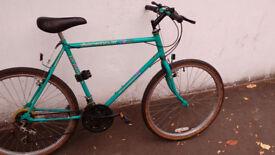 Raliegh mountain bike bicycle 15 speed