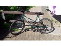 Raleigh Genesis Limited Edition Ladies Bike FOR CHEAP