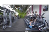 Personal Trainer needed in busy Tunbridge Wells gym - Self employed, but no rent!