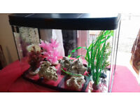 Love Fish 40 Litre Panorama Aquariam with LED Lighting & accessories