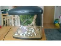 Aquarium Interpet Fish Pod 48