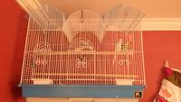 Budgies and Cage for sale!