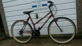 lady's concept mountain bike