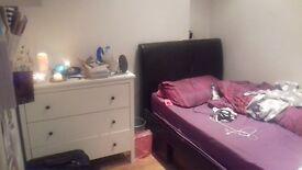 Cozy single room in all women flatshare