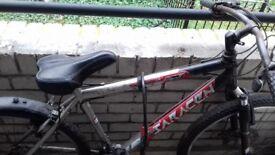 Limited Edition Team saracen mountain bike