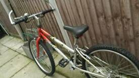 Bike (mountain)