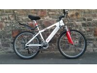 FULLY SERVICED SARACEN TEAM BICYCLE