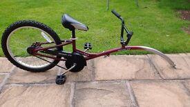 Childs Tail bike - smokey joe