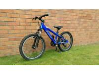 Carrera kids mountain bike