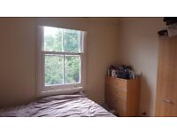 Double room in friendly houseshare - Southfields - available early July 2017