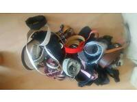 Over 45 Ladies belts most never worn £15