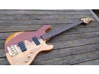 Cort Rithimic Jeff Berlin Signature Bass Guitar