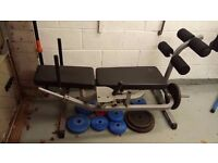 Abdominal Bench - pro gym equivalent, extremely heavy duty not a cheap look a like