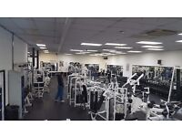 Commercial Gym equip for sale -Life Fitness/ Hammer strength/ Cardio/ Weights/ D-bells/ Plate load