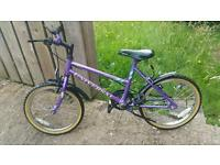 Girls UNIVERSAL DRAGONFLY mountain bike for sale