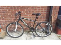 Apollo Slant - Mens Mountain Bike