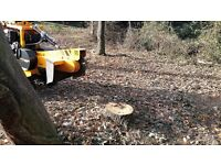 Cambridge Tree Stump Grinding And Tree Root Removal