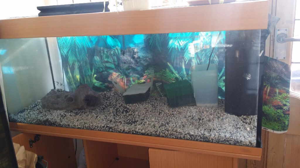 Fish tank juwel rio 240 with stand built in filter pump for Fish tank with built in filter