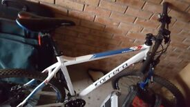 Carrera Kraken mountain bike for sale