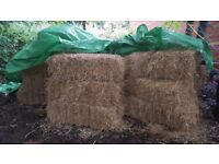 24 hay bales for sale