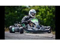 World formula 2013 kart