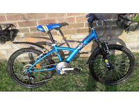 Child's blue bike