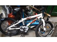 BMX bike for 5-7 year old