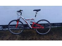 men's Mountain Bike I can deliver