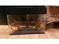 corner fish tank. cute ornaments and gravel. offers welcome