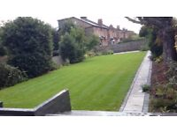 Professional lawn care and regular grass cutting service, using ride on mowers for the larger lawns.