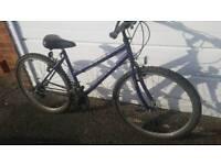 Ladies 17in frame Apollo Mountain Bike