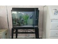 aquarium fish tank and stand read description