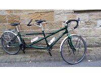 "Tandem: Dawes Galaxy Twin 19""/ 17"" 2013: Including Pendle Tandem Car Roof Rack. Superb condition"